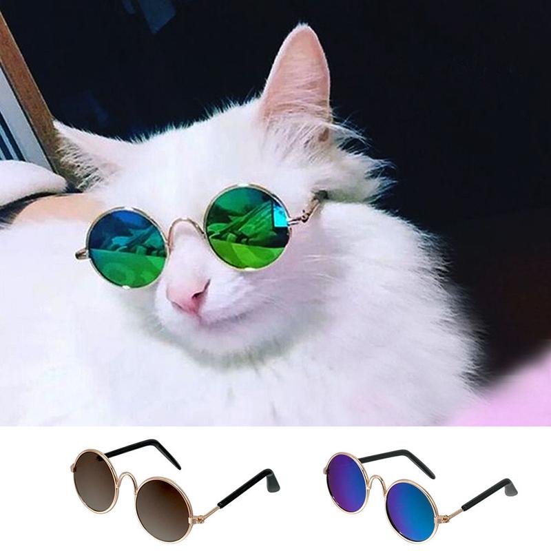 Katze Sonnenbrille Sommer Hunde Katzen Brille Pflege Haustier Zubehör Geschenk